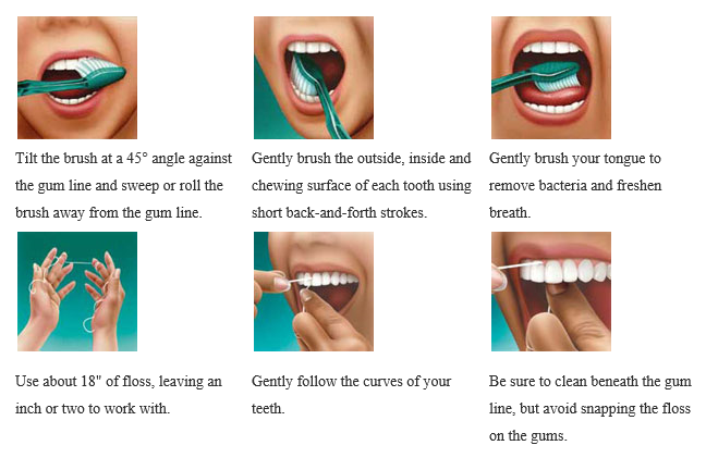 Jackosnville Emergency Dentist Toothbrush Techniques